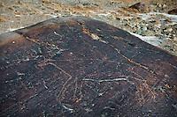 Ancient rock petroglyph depicting a large animal that looks like a deer..Near Bozoi Gumbaz..On the Little Pamir plateau.