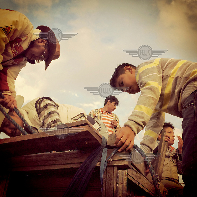 Cowboys stand on top of a truck loaded up with bulls, transported from Mocha, during the fiestas of Tumbaco.