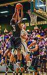 26 January 2014: University of Vermont Catamount Forward Ethan O'Day, a Sophomore from Mansfield, CT, defends the basket against Binghamton University Bearcat Guard Jordan Reed, a Sophomore from Philadelphia, PA, at Patrick Gymnasium in Burlington, Vermont. The Catamounts defeated the Bearcats 72-39 to notch their 12th win of the season. Mandatory Credit: Ed Wolfstein Photo *** RAW (NEF) Image File Available ***