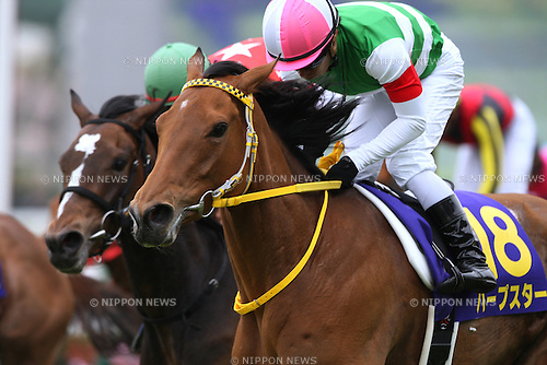 Harp Star (Yuga Kawada),<br /> APRIL 13, 2014 - Horse Racing :<br /> Harp Star ridden by Yuga Kawada wins the Oka Sho (Japanese 1000 Guineas) at Hanshin Racecourse in Hyogo, Japan. (Photo by Eiichi Yamane/AFLO)