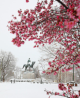 Snow covered statue in lee parkin Charlottesville, Va.