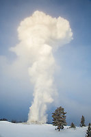 Old Faithful erupting at -33 degrees