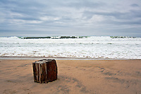 A piece of wood washed up on Pescadero State Beach with the waves and clouds for background.