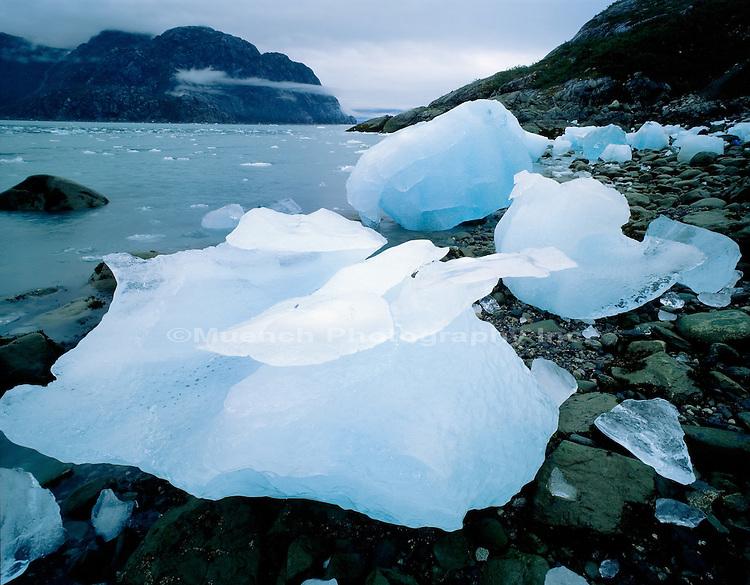 Johns Hopkins Inlet Glacier Bay NP  ALASKA