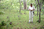 Roger Griffin Observing Toque Macaques