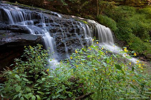 Springfield Falls, Pennsylvania