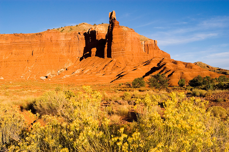 Capitol Reef National Park, Utah, UT, Chimney Rock at sunset, yellow saltbrush vegetation, rock formation, landform, arid, Southwest America, American Southwest, US, United States, Image ut398-17499, Photo copyright: Lee Foster, www.fostertravel.com, lee@fostertravel.com, 510-549-2202