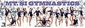 Gymnastics Panoramic's