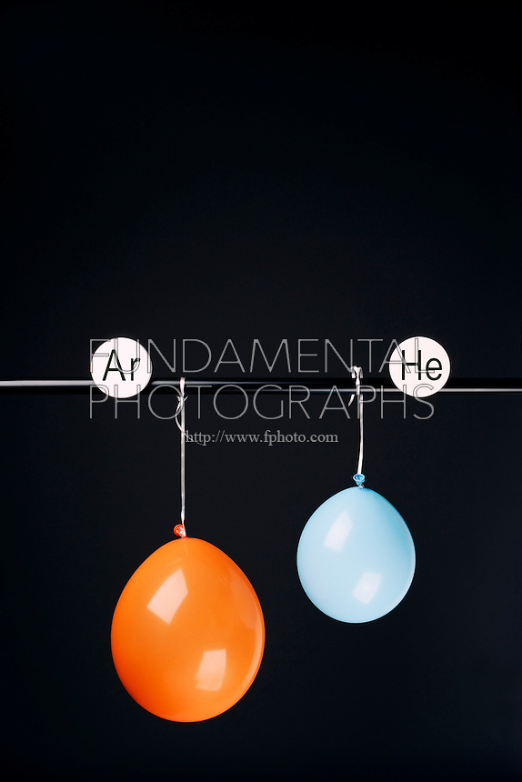 HELIUM AND ARGON FILLED BALLOONS<br /> (Variations Available)<br /> The Two Balloons Are Filled To The Same Volume<br /> After 14.5 hours the helium filled balloon is smaller than the Argon filled balloon. Helium effuses out of the balloon faster than Argon.  Light atoms or molecules effuse through the pores of the balloons faster than heavy atoms or molecules.