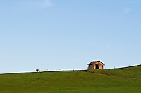 Small wooden shed and road on green grass hill, Allgäu region, Bavaria, Germany