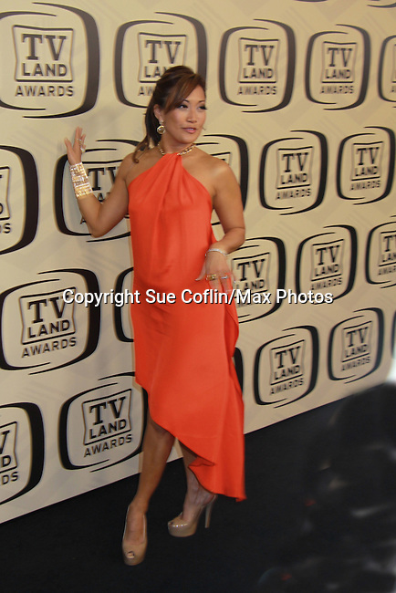 """10th Anniversary of the TV Land Awards on April 14, 2012 to honor shows """"Murphy Brown"""", """"Laverne & Shirley"""", """"Pee-Wee's Playhouse"""", """"In Loving Color"""" and """"One Day At A Time"""" and Aretha Franklin at the Lexington Armory, New York City, New York. (Photo by Sue Coflin/Max Photos)"""