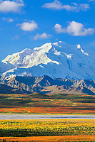 North face of 20, 3020+ ft. Mt. McKinley (locally called Denali) autumn tundra and McKinley river bar, Denali National Park, Alaska.