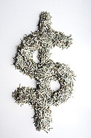 Concept image using shredded United States currency.