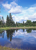 MIRROR-LIKE REFLECTION IN STILL POND<br /> Landscape Visible In On The Water Surface<br /> The water's reflective surface creates a virtual image