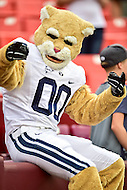 Landover, MD - SEPT 24, 2016: BYU mascot has fun with the crowd before their match up against West Virginia at FedEx Field in Landover, MD. (Photo by Phil Peters/Media Images International)