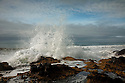 OR01213-00...OREGON - Pounding surf at the Cape Perpetua Scenic Area on the Pacific Coast in the Siuslaw National Forest.