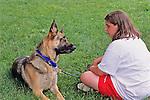 German Shepherd Looking At Owner