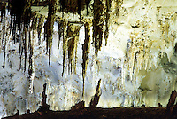 STALACTITES &amp; STALAGMITES IN LIMESTONE CAVERN<br /> Soda Straws - Big Room<br /> Stalactites hang from the top of limestone caverns, formed by the dripping of mineralized solutions. Corresponding columnar deposits, Stalagmites, are built upward. Carlsbad.