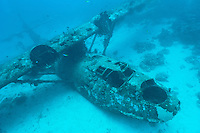 Wreck of a PBY Catalina seaplane or flying boat underwater, Biak, West Papua, Indonesia.