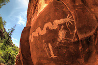 Sinagua Serpent - Sedona, Arizona - rock art - petroglyph - Sinagua culture