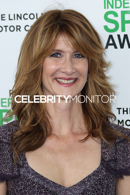 SANTA MONICA, CA, USA - MARCH 01: Laura Dern at the 2014 Film Independent Spirit Awards held at Santa Monica Beach on March 1, 2014 in Santa Monica, California, United States. (Photo by Xavier Collin/Celebrity Monitor)