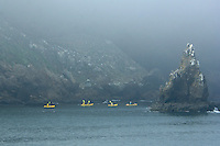 730850322 ocean kayakers skirt the edge of santa cruz island and surrounding sea stacks in heavy fog in channel islands national park off the coast of southern california