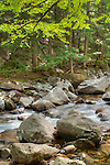 The Lovell River in West Ossipee, New Hampshire.