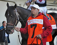 Tiger Walk in the paddock before the Wood Memorial at Aqueduct Racetrack in Ozone Park, New York on Wood Memorial Day on April 7, 2012