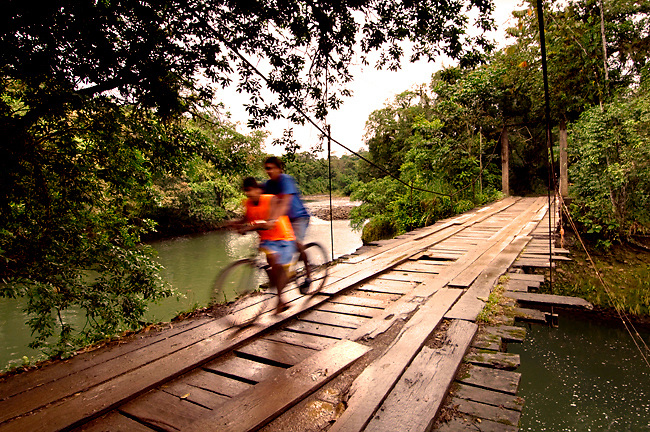 Children Ride Their Bike On An Old Wooden Bridge Crossing The Sarapiqui River In Costa Rica.
