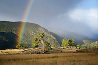 Beautiful rainbow in Moraine Park, Rocky Mountain National Park