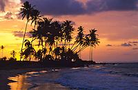 Beach at Las Palmas<br /> Puerto Rico