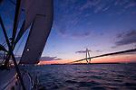 Sailboat Sailing Charleston Ravenel Bridge Cooper River