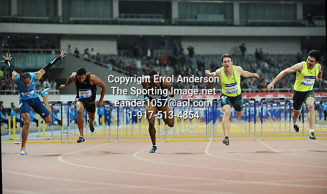 2014 Shanghai Diamond League