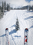 Skis viewed from chair lift seem to be headed toward a spruce at Telluride.