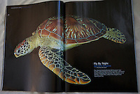 Double spread in Scuba Diver Australasia