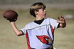 Primetime Cardinals