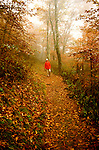 TN: Great Smoky Mountains Park Hiker, Hiking the Appalachian Trail, model released, Fall color, tnsmok105.Photo copyright Lee Foster, www.fostertravel.com, 510/549-2202, lee@fostertravel.com