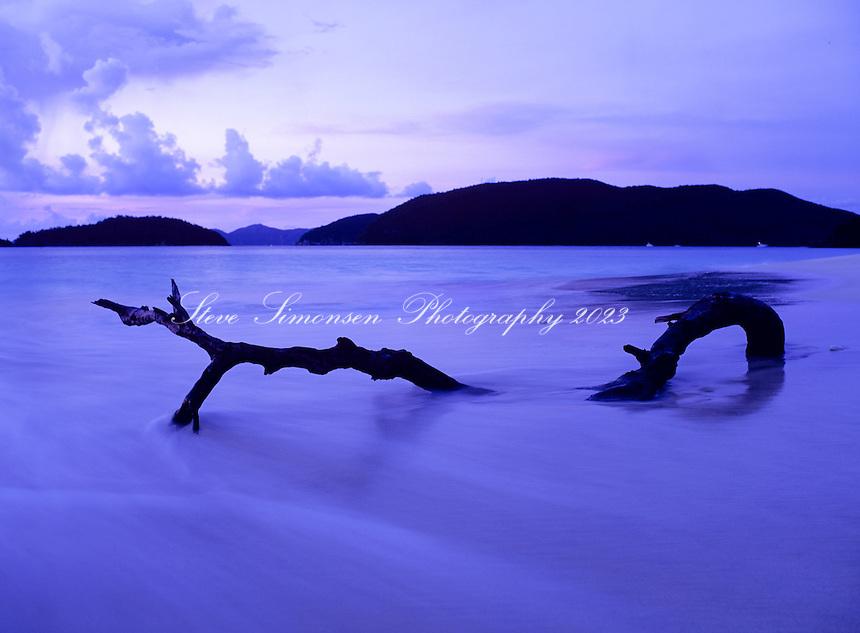 Driftwood at Cinnamon Bay.Virgin Islands National Park.St. John, U.S. Virgin Islands