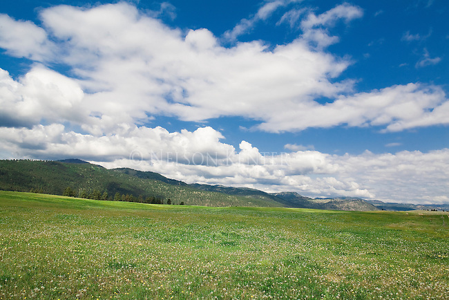 Open land on the western edge of Missoula, Montana