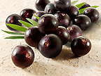 pictures, fotos &amp; images of the acai berry the super fruit anti oxident from the Amazon. The acai berry has been associated with helping weight loss.