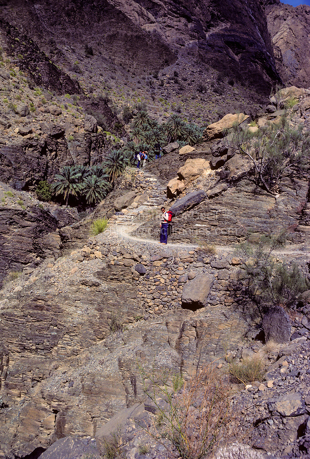 Oman.  Trekking in the Jebal Akhdar.