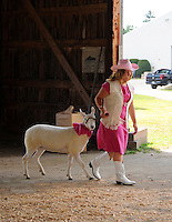 Young girl with sheep in sheep show at Cheshire Fair in Swanzey, New Hampshire USA