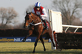 All The Aces ridden by Barry Geraghty action during the Sidney Banks Memorial Novices Hurdle - Horse Racing at Huntingdon Racecourse, Cambridgeshire - 23/02/12- MANDATORY CREDIT: Gavin Ellis/TGSPHOTO - Self billing applies where appropriate - 0845 094 6026 - contact@tgsphoto.co.uk - NO UNPAID USE.