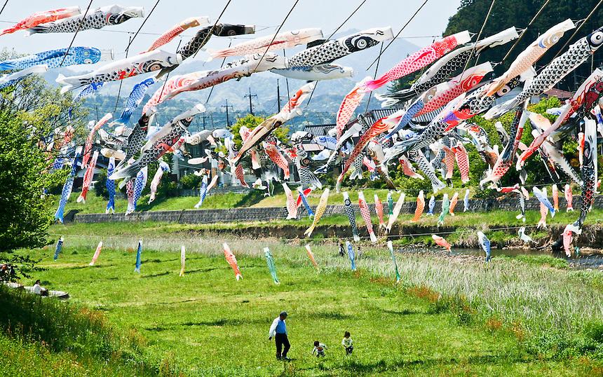 100s of distinctive Koi carp streamers are strung across a river to celebrate Japan`s children's festival.