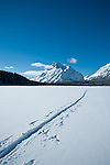 lone ski tracks across frozen two medicine lake, rising wolf mountain, glacier national park, montana