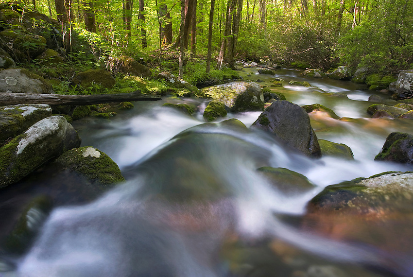 """""""OCONALUFTEE SPRING"""" -- Spring cascades in Great Smoky Mountains National Park along the Oconalufee River, near Cherokee, NC. The park is located on the border of North Carolina and Tennessee in the southern Appalachian mountains."""