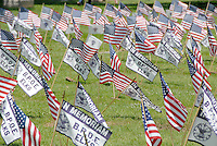 Hundreds of flags wave in the breeze at Woodlawn Cemetery during the 73rd Annual Memorial Day Observance on Monday, May 30, 2011.
