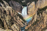 Lower Falls of the Yellowstone with rainbow
