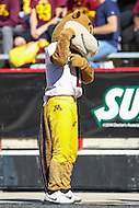 College Park, MD - October 15, 2016: Minnesota Golden Gophers mascot during game between Minnesota and Maryland at  Capital One Field at Maryland Stadium in College Park, MD.  (Photo by Elliott Brown/Media Images International)