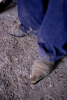 Cowboy boots of one of the tlachequeros. Tinacal (center for fermenting pulque) Don Juan Arragon in the village of Altzayanla. Pulque route Tlaxcala, Mexico June 6, 2007